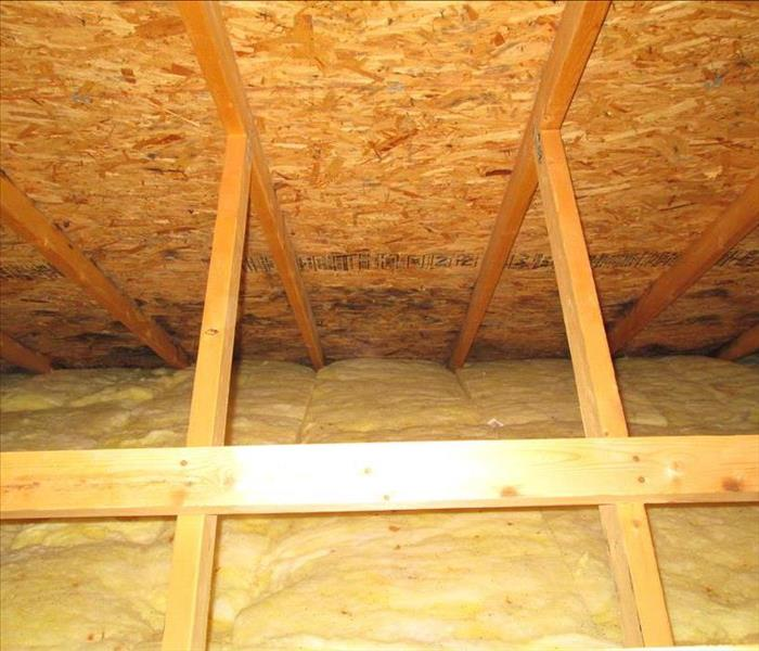 Attic Mold in Albuquerque Home Before