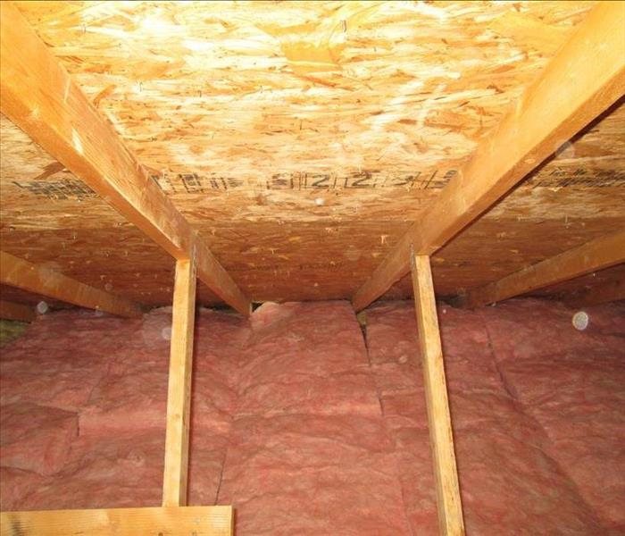 Attic Mold in Albuquerque Home After