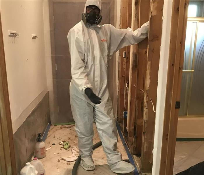 Mold Remediation The Importance of Mold Remediation for your Home in Albuquerque and Santa Fe