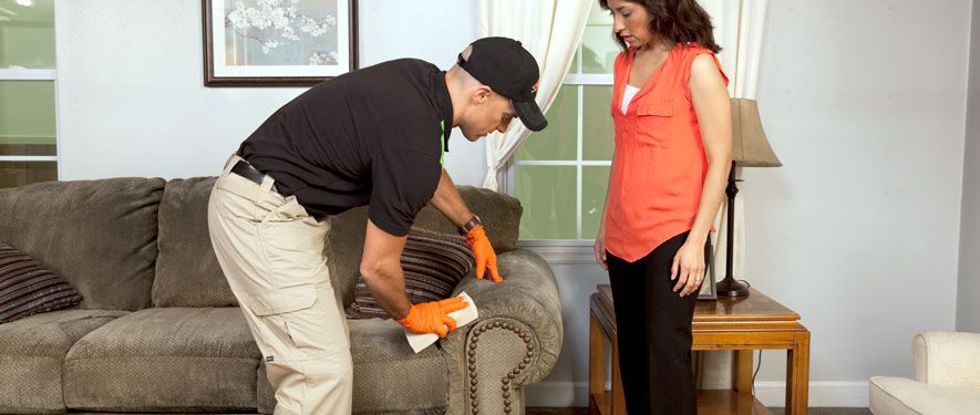 Albuquerque, NM carpet upholstery cleaning